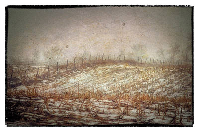 Photograph -  A Cold Field by Kimberleigh Ladd