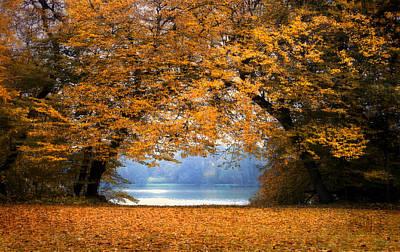 Photograph -  A Port Autumn Leaves by Henrik Petersen