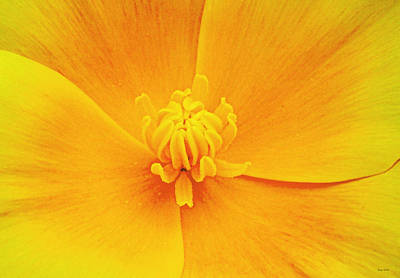 A Study In Yellow- Centerpiece 003 Art Print by George Bostian