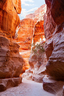 Nabatean Photograph -  Al Siq by Alexey Stiop