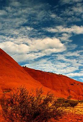 Photograph -  Australia - Desert Majesty by Jacqueline M Lewis