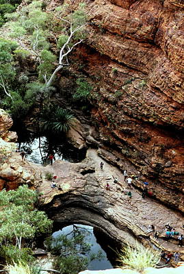 Photograph -  Australia - King's Canyon Oasis by Jacqueline M Lewis