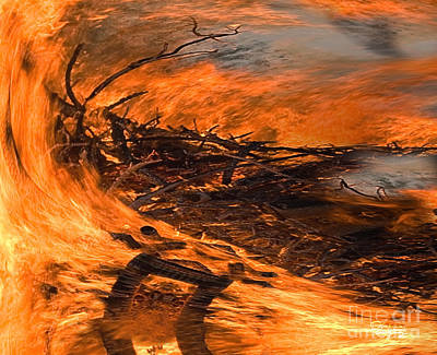 Photograph -  Blazing Fire by Gabriele Pomykaj