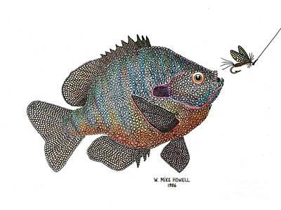 Bluegill And Fly Art Print