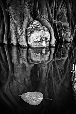 Buddha Head Statue  Art Print