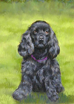 Pastel -  Budwood The Black Cocker Spaniel by Lenore Gaudet