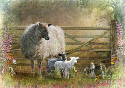 Sheep Mixed Media -  By The Gate by Trudi Simmonds