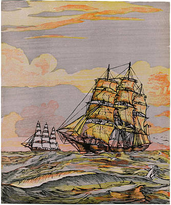 Swordfish Drawing -  California Clipper Ships by Mary Evans Picture Library