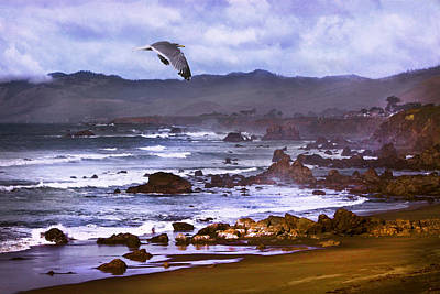 Photograph -  California Highway 1  by Kandy Hurley