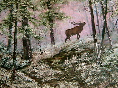 Call Of The Wild Original by Jean Walker