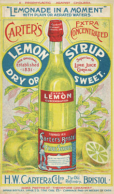 Lemon Drawing -  Carter's Lemon Syrup -  Lemonade by Mary Evans Picture Library