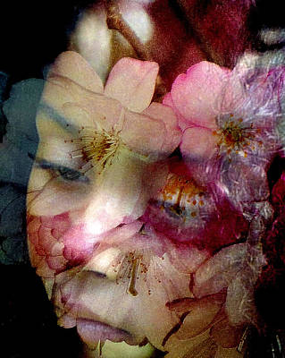 Photograph - Cherry Blossom Time by Jodie Marie Anne Richardson Traugott          aka jm-ART