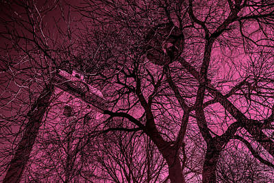 Church And Trees In Pinkish Original by Tommytechno Sweden