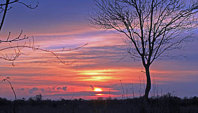 Photograph -  Countryside Sunset by Tony Murtagh