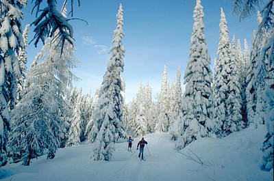Snow Photograph -  Cross Country Skiers On Mountain Top by Doug Oriard