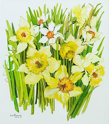 Daffodils And Narcissus Art Print by Joan Thewsey
