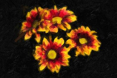 Realistic Photograph -  Daisy Flowers by Tommytechno Sweden