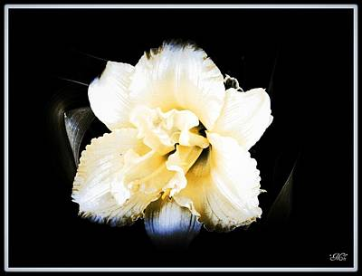 Art Print featuring the photograph  Daylily by Michelle Frizzell-Thompson