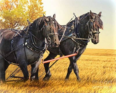 Shire Horse Digital Art -  Days Gone By by Trudi Simmonds
