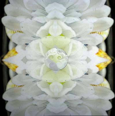 Silks Mixed Media -  Decorative Flowers Soft As Silk by Pepita Selles