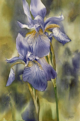 Double Blue Irises Art Print by Alfred Ng