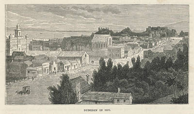 Dunedin  General View        Date 1870 Art Print by Mary Evans Picture Library