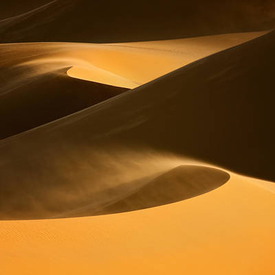 Wind Photograph - ... Dunes by Raymond Hoffmann
