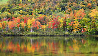 Photograph -  Echo Lake Fall Reflections by John Vose