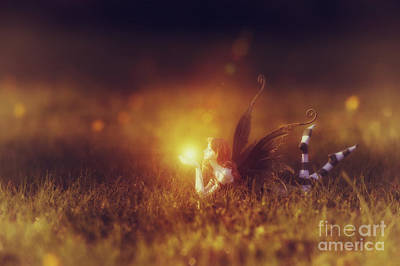 Child Photograph -  Faerie Light  by Tim Gainey