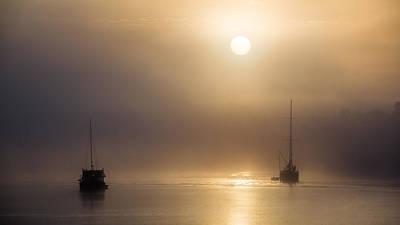 Photograph -  Foggy Burnett 1 by Brad Grove
