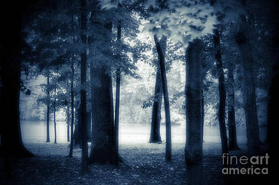 Photograph -  Foggy Day Dream by Peggy Franz