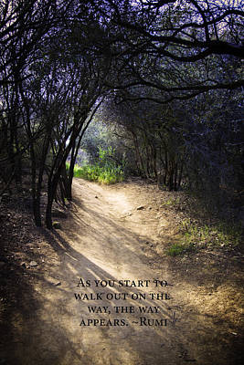 Inspiration Photograph -  Forest Path by Stella Levi