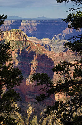 Photograph -  From The North Rim Of The Grand Canyon  by Saija  Lehtonen