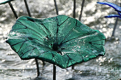 Photograph -  Glass Lily Pad  by Susan Herber