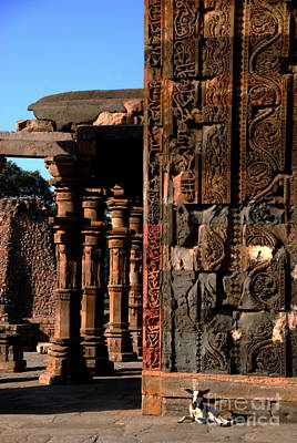 Photograph -  Golden Light Of Qutb Minar by Jacqueline M Lewis