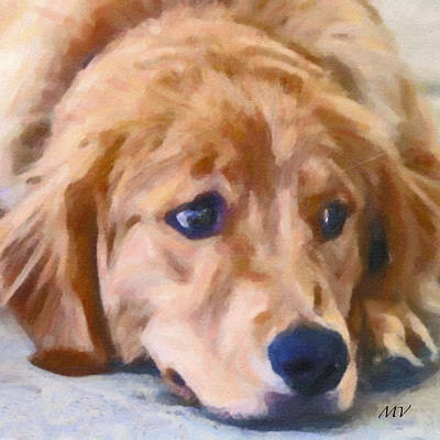 Painting -  Golden Retriever Dog by Femina Photo Art By Maggie