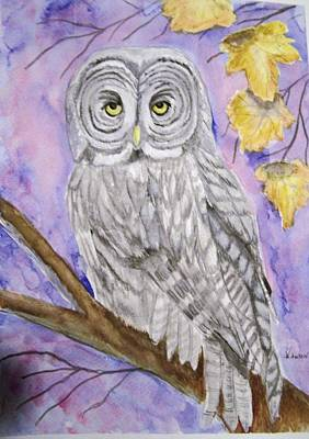 Painting -  Grey Owl by Belinda Lawson