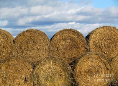 Photograph -  Hay  by France Laliberte