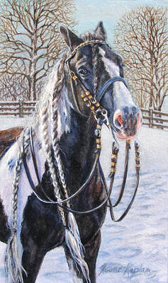 Painting -  I'm Ready For The Ribbons Gypsy Vanner Horse by Denise Horne-Kaplan