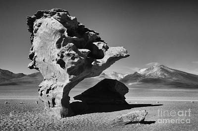 Photograph -  Landscape Of Bolivia by Bob Christopher