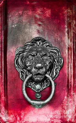 Photograph -  Lion's Head Door Knocker by Colleen Kammerer