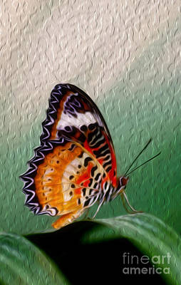 Digital Art -  Malay Lacewing Butterfly II by Kenneth Montgomery