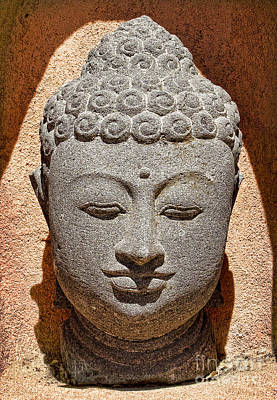 Photograph -  Many Faces Of Buddha by Elena Nosyreva