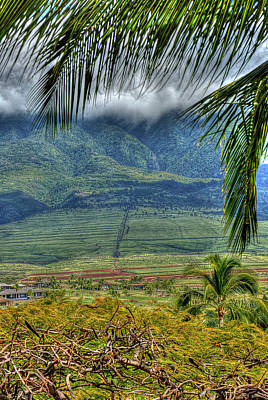 Photograph -  Maui Foot Hills by Arthur Fix