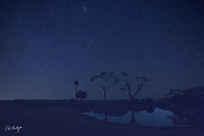 Meteor Shower In The Lowcountry Art Print by Phill Doherty