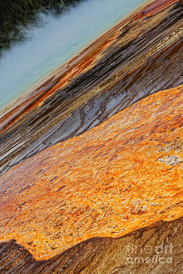 Photograph -  Midway Geyser Basin Beauty by Lincoln Rogers