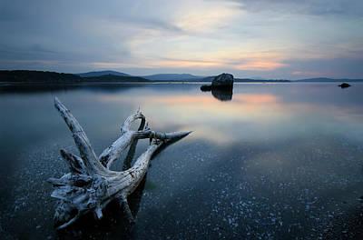 Driftwood Photograph - *** by Milen Dobrev