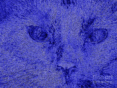 Digital Art -  One In A  Million. Portrait Of Cat. Art by Oksana Semenchenko