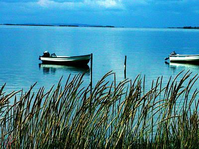 Peaceful Samsoe Island Denmark Art Print by Colette V Hera  Guggenheim