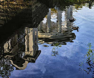 Photograph -  Pond Reflections by Vladimir Kholostykh